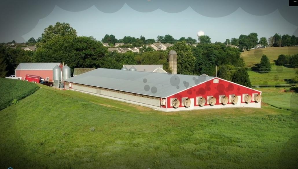 luchtwassers vermindering ammoniak - Farm